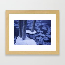 Winter Ice Surrounds Young Trees In The Otonabee River Framed Art Print
