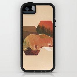 POLYBEAR iPhone Case