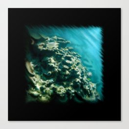 Tunnelvisions/DeadCoralReef2 Canvas Print