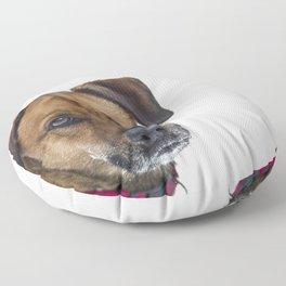 Puppy Dog Eyes Floor Pillow