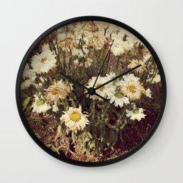 Dried Daisies Wall Clock