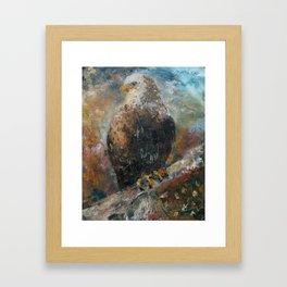 Bald Eagle on Birch Framed Art Print