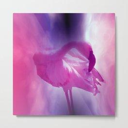 pink flamingo - square format - Metal Print