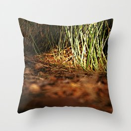 Macro close up forest life spying Throw Pillow