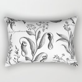 Antique Nepenthes and Drosera Print from 1757 Rectangular Pillow