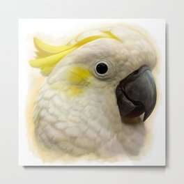 Sulphur Crested Cockatoo realistic painting Metal Print