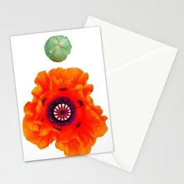 Orange et grrr Stationery Cards