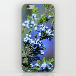 Light Blue Juniper Berries iPhone Skin