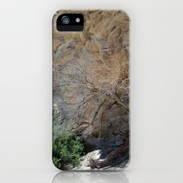 Tree to the Hot Springs iPhone Case