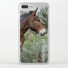 Mule in Wyoming Clear iPhone Case