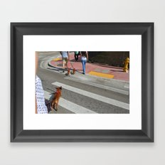 Running Dachshund  Framed Art Print