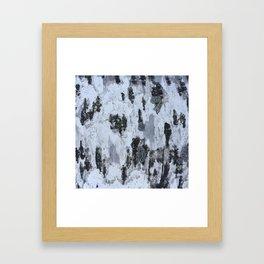 Birch bark Framed Art Print