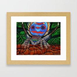 Peacock Spider's Dance Framed Art Print