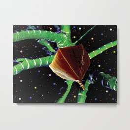 Macro Space Virus Metal Print