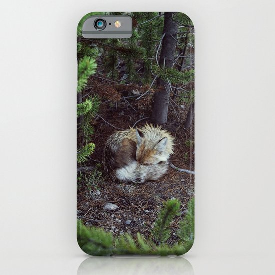 Sleeping Fox iPhone & iPod Case