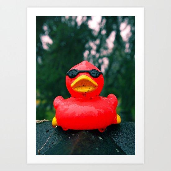 Northwest duck Art Print