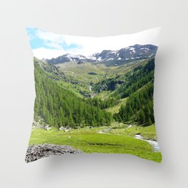 Alpes in summer Throw Pillow