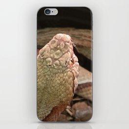 Copperhead Snake iPhone Skin
