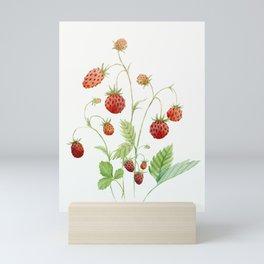Wild Strawberries Mini Art Print