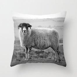 An Exmoor sheep. Throw Pillow