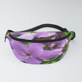 Purple and Green Fanny Pack