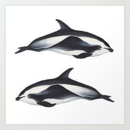 Hourglass Dolphins Art Print