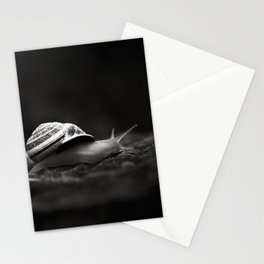 Going East Stationery Cards