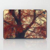 copper iPad Cases featuring Copper Beech by Dirk Wuestenhagen Imagery