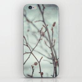 Wintermint. iPhone Skin