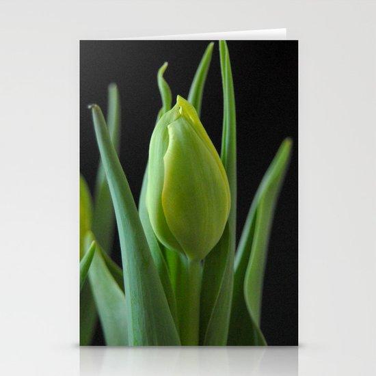 Tulip Blossom Stationery Cards