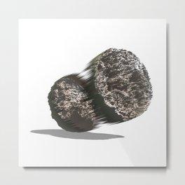 Two Metal Print