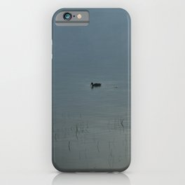 Morning Blue: Mallard iPhone Case