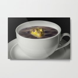 Yikes there is a Frog in my Java Metal Print