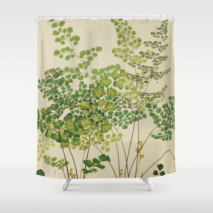 Maidenhair Ferns Shower Curtain