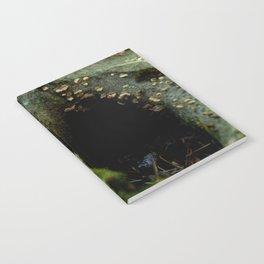 Hidden Home #1 Notebook