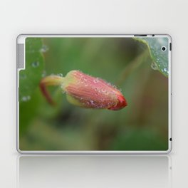 Beautiful Macro Shot of a Spring Flower Laptop & iPad Skin