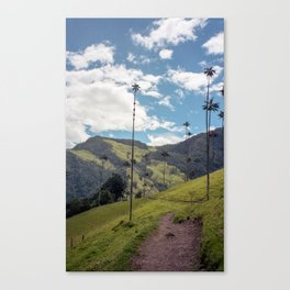 Wax Palms of Cocora Valley on film Canvas Print