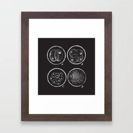 Fission (no caption!) Framed Art Print