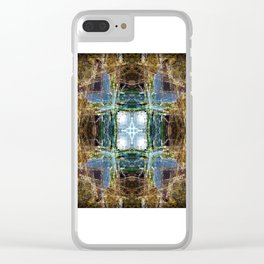 Cabrillo National Monument: Tide Pools Clear iPhone Case