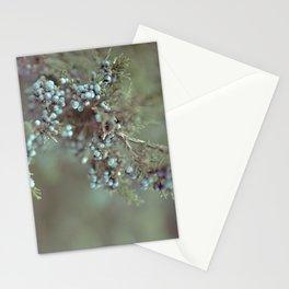 Cedar Berry Stationery Cards