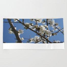 Cherry Blossom Branches Against Blue Sky Beach Towel
