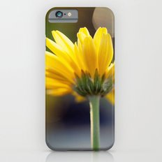 Yellow Gerber Daisy iPhone 6s Slim Case