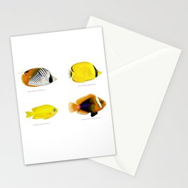 Plate of Tropical Fish Stationery Cards