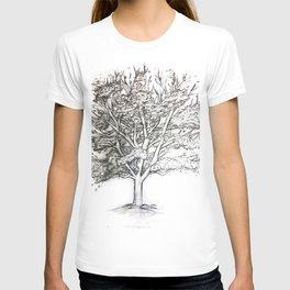 Dutchess Tree T-shirt