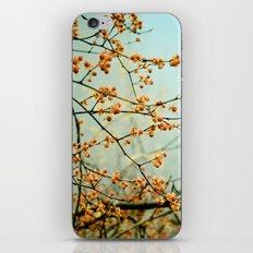 Bittersweet iPhone Skin