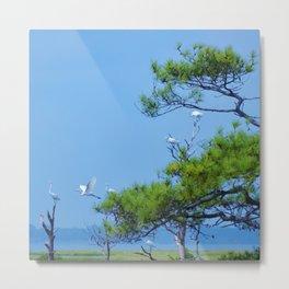 Flock of Cranes Metal Print