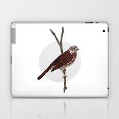 Messenger 001 Laptop & iPad Skin