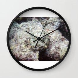Scorpion fish Wall Clock