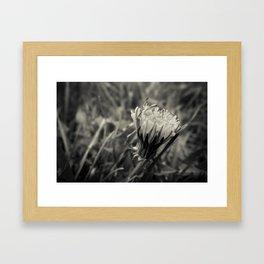 Just Dandy Framed Art Print