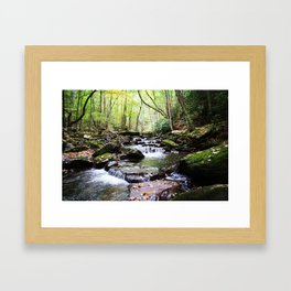 Virginia Hike Framed Art Print